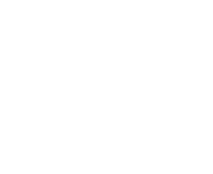singapore-prestige-brand-award-2018-established-brand-winner-white